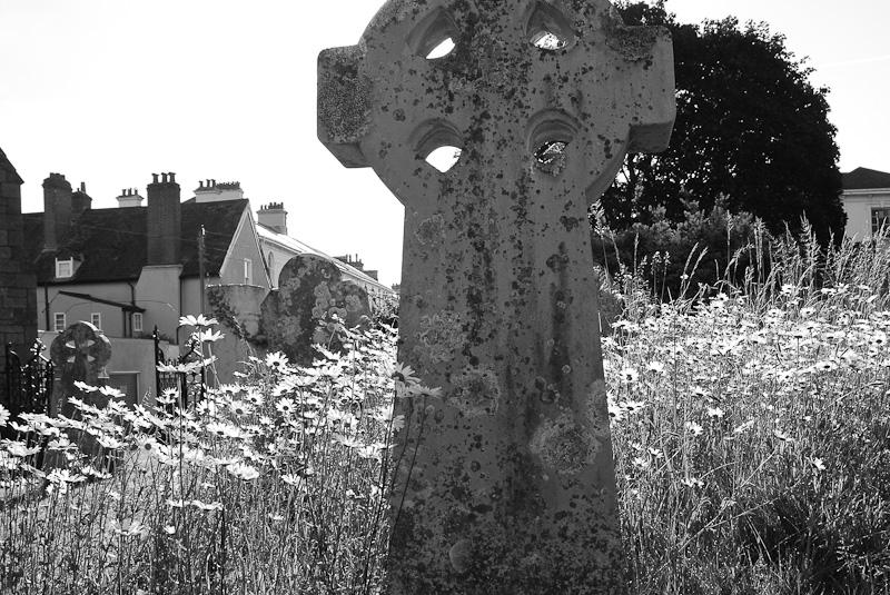 Dawlish - St Gregory's churchyard 2